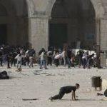 Info Palestina Terkini: Israel Bombardir Jalur Gaza, 200 Orang Tewas Dalam Waktu Satu Minggu